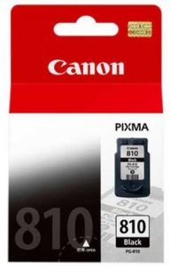 Canon PG-810 Ink Cartridge